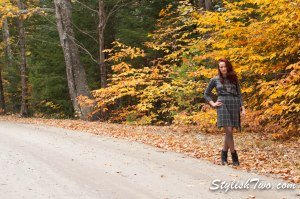 October 2015 Plaid Dress-0003