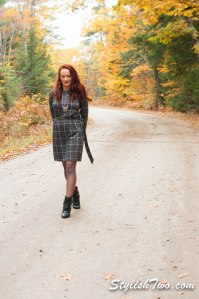 October 2015 Plaid Dress-0010